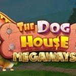 The Dog House Megaways Now Live At Box 24, Black Diamond & Spartan Slots Casino